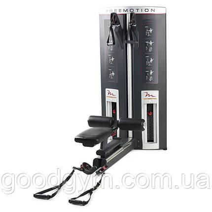 Тросовый тренажер для дельтовидных мышц FreeMotion F505, фото 2