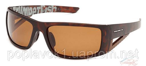Поляризационные очки SOLANO FL 20001C FL 20001C