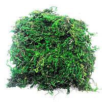 Мох натуральный темно-зеленый (125 г)