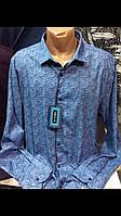 Рубашки с длинным рукавом больших размеров с кашемиром