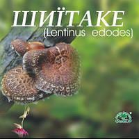 Шиитаке- натуральный гриб в пакетиках (Дана-Я,15 саше пакетов)