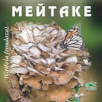 """Дана Я """"Майтаке """"- натуральный гриб в пакетиках (15 саше пакетов)"""