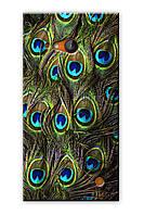 Чехол для Nokia Lumia 730 (Перья павлина)