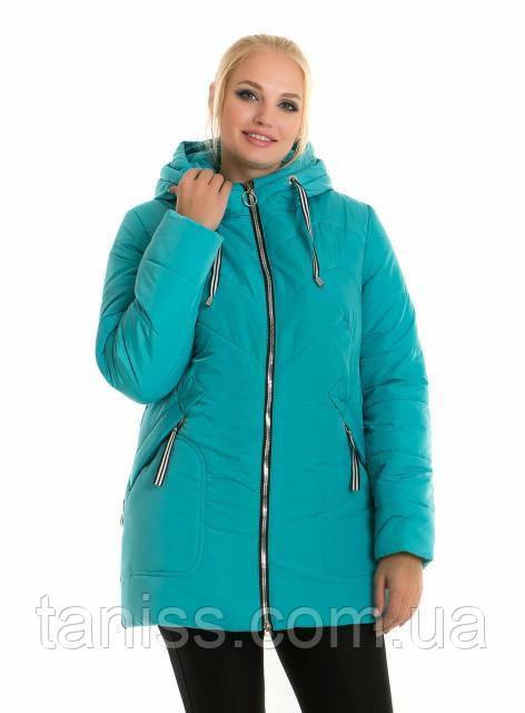 Модная женская куртка безмеха, утеплитель силикон, размеры с 48,50.бирюза(58-1)