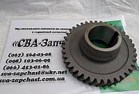 Шестерня ПАЗ ЗИЛ 5301 МАЗ 4370 39зуб. привода промежуточного вала 320570-1701056