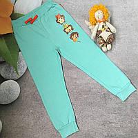 Трикотажные спортивные штаны для девочки 4 года рост 104-110см
