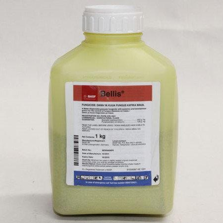 Фунгіцид Белліс®, в.г - 1 кг | BASF
