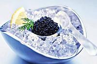 Икра черная севрюги, пастеризованная, паюсная, 113 грамм, стекло