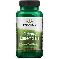 Основы для почек kidney essentials