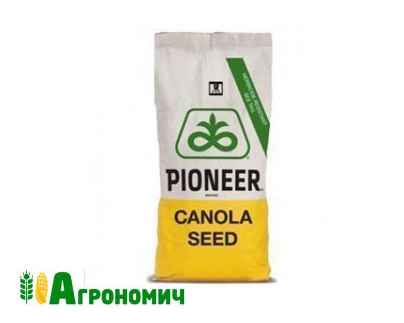 Насіння озимого ріпаку PX125 CL Pioneer | ПХ125 КЛ Піонер®