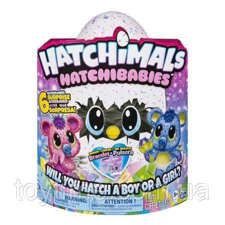 Хэтчималс Хетчибейбиз Коалла / Hatchimals HatchiBabies KoalabeeHatching Egg