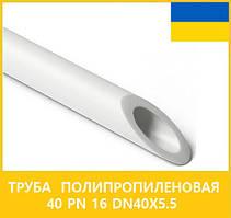 Труба поліпропіленова 40 PN 16 dn40х5,5