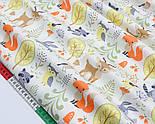 """Сатин тканина """"Єноти, лисички, олені в лісі"""" на молочному №1728с, фото 4"""