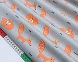 """Сатин ткань """"Оранжевые лисички с пышным хвостом"""" на сером №1730с, фото 4"""