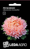 Семена астры Дюшес, 0,2 гр., абрикосовая, пионовидная