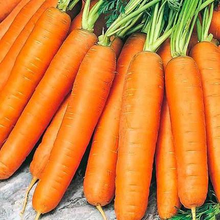 Насіння моркви Берликум 500г, фото 2