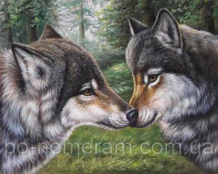 Алмазная техника Алмазная мозаика Влюбленные волки (DM-271) 50 х 40 см (Без подрамника)