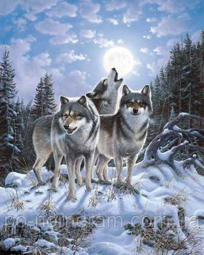 Алмазная живопись Алмазная мозаика Стая волков (DM-279) 40 х 50 см (Без подрамника)