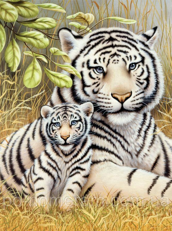 Картина из мозаики Алмазная мозаика Любовь тигрицы (DM-284) 30 х 40 см (Без подрамника)