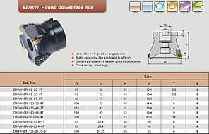 EMRW 6R-125-40-7T, фото 2