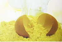 Яичный порошок из меланжа