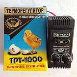 Инкубатор курочка Ряба 120 с автоматическим переворотом продам постоянно оптом и в розницу,Харьков, фото 4
