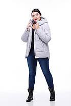 Зимняя короткая куртка пуховик очень теплый большие и малые размеры от 40 до 54, фото 3