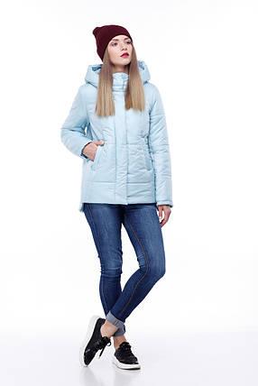 Женская короткая зимняя куртка пуховик короткий размер от 40 до 54 полномерные, фото 2
