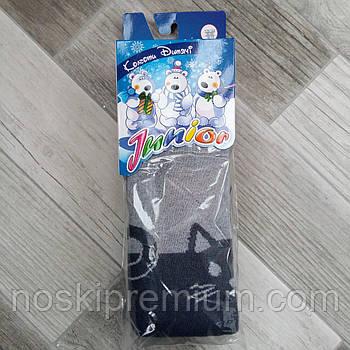 Колготки детские махровые х/б Классик Junior, Cotton 450 Den, 18-19 размер, 116-122 см, 15503