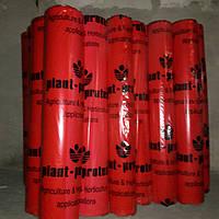 Агроволокно50g/m2 3.2м×100м(белое) Plan-Protex(Польша)