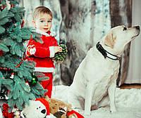 Елка и маленький ребёнок. Как безопасно устроить праздник?