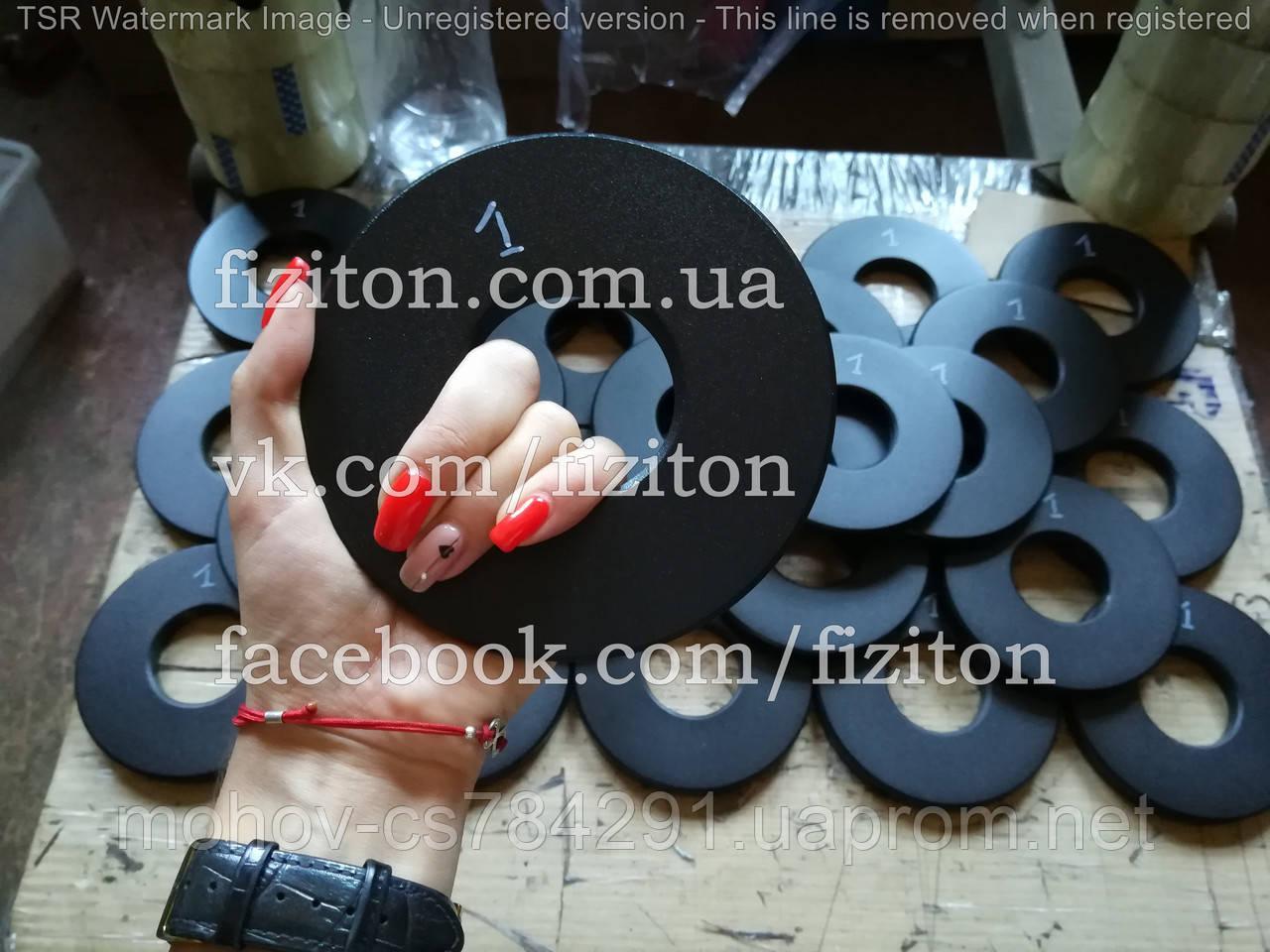 Блин (диск) стальной 1 кг + покраска