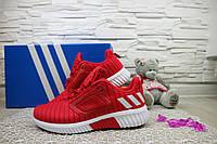 Женские кроссовки текстильные весна/осень красные Classica G 7391 -5, фото 1