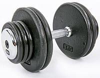 Гантель профессиональная стальная RECORD 30 кг