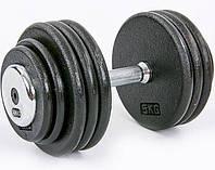 Гантель профессиональная стальная RECORD 40 кг