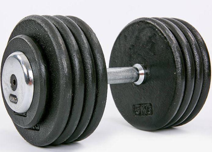 Гантель професійна сталева RECORD 45 кг
