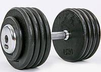 Гантель професійна сталева RECORD 45 кг, фото 1