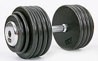 Гантель профессиональная стальная RECORD 50 кг
