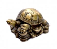 Фигурки из полимеров Черепаха