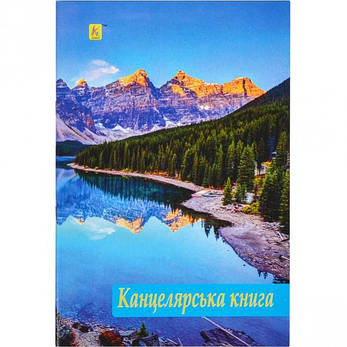 Книга канцелярская А4 96 листов, офсет, фото 2