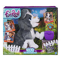 Интерактивная игрушка FurReal Friends Щенок Рикки / Hasbro FurReal Friends Ricky, the Trick-Lovin' Pup