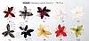 Зажим цветок Лотос 535645, фото 5
