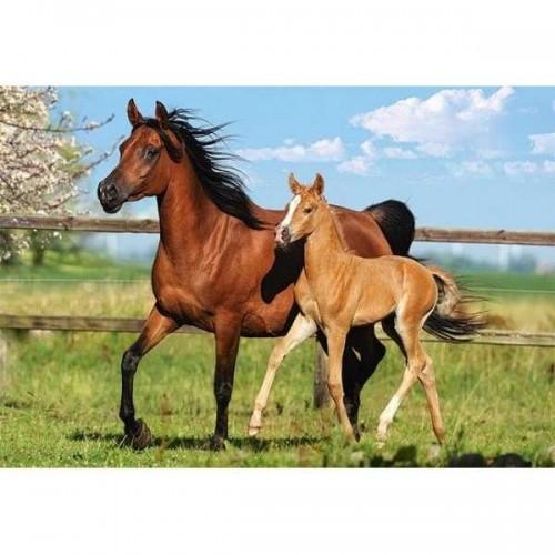 Пазл Касторленд 260 (26784) Кінь з лошам 32*23 см