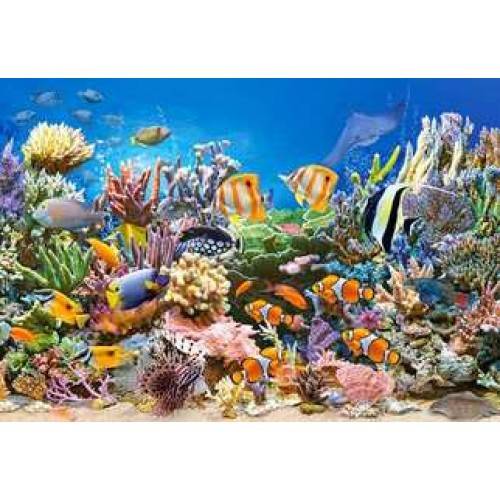 Пазл Касторленд 260 (27279) Морський світ 32*23 см