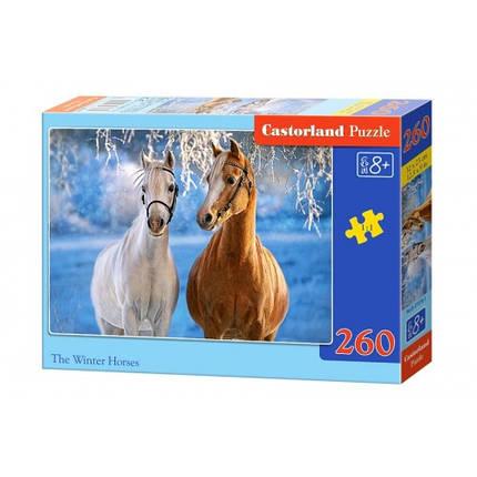 Пазл Касторленд 260 (27378) Коні 32*23 см, фото 2
