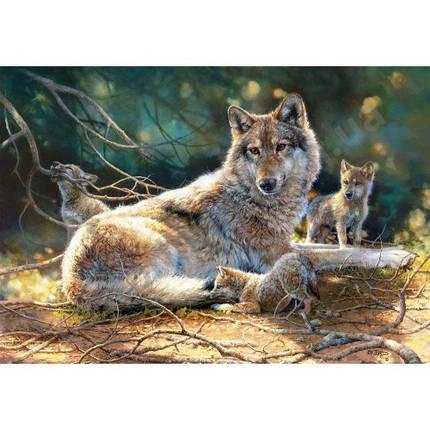 Пазл Касторленд 1500 (1400) Вовки 68*47 см, фото 2