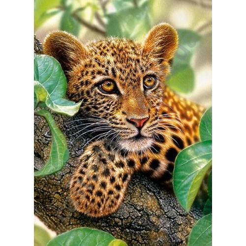 Пазл Касторленд 300 (170) Ягуар на дереві