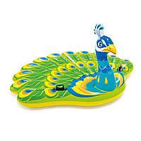 Детский надувной плотик Intex  Павлин 193х163х94 см (57250)