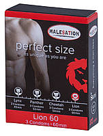 Презервативы - MALESATION Lion 60