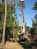 Спилить дерево. Обрезка деревьев. Вырубка, покос сорняка. Удаление дерева, порезка Киев.
